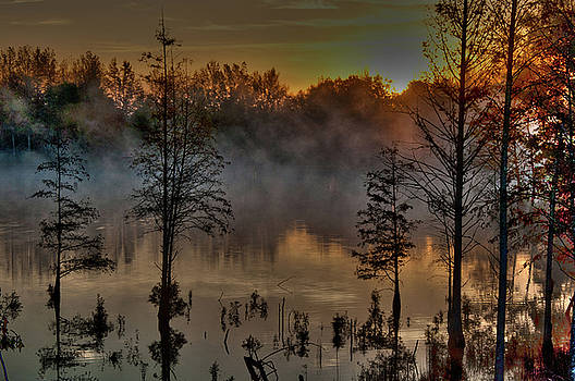 Morning Fog by Kimberly McKinley