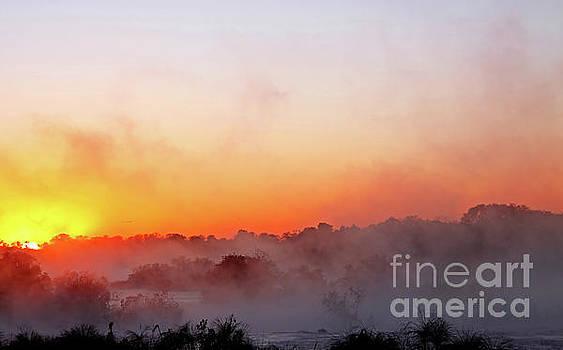 Morning fog near Popa Falls in Namibia by Wibke W