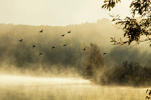 Morning fog on Haley Pond in Rangeley Maine by Jeff Folger