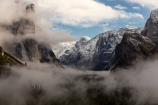 Morning Fog Yosemite National Park by Troy Montemayor