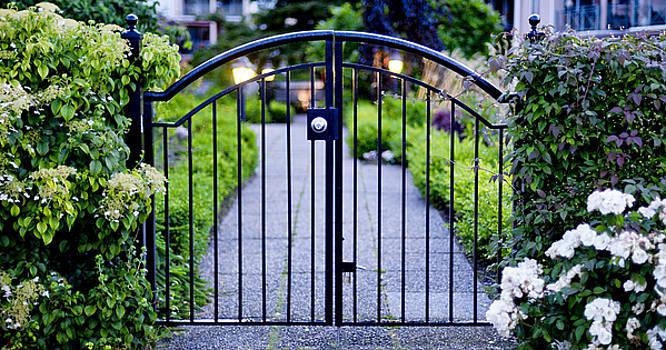Morning Gate by Lorna Rande