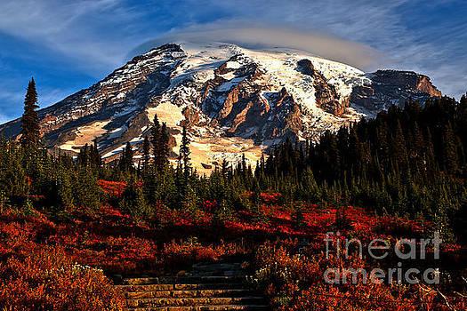 Adam Jewell - Morning Glory At Mt. Rainier