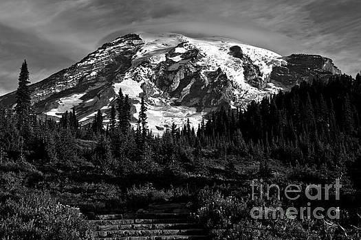 Adam Jewell - Morning Glory At Mt. Rainier - Black And White
