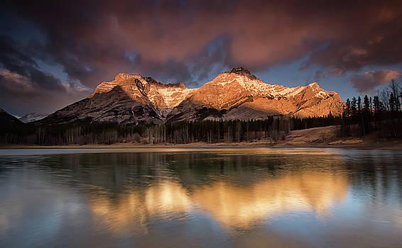 Morning Glory by Celine Pollard