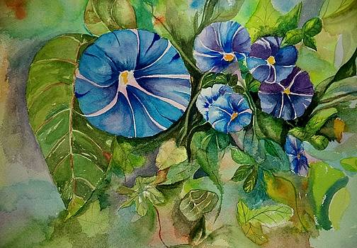 Morning Glory by Constance Larimer