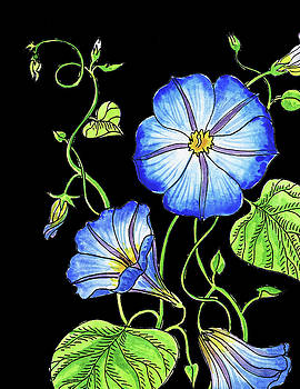 Morning Glory Flower Watercolour by Irina Sztukowski