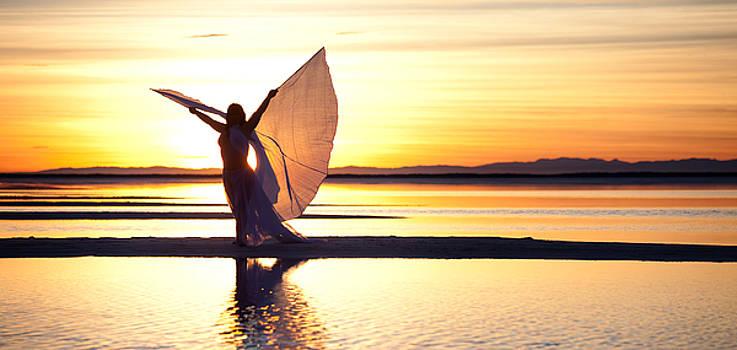 Morning Glory Wide by Dario Infini