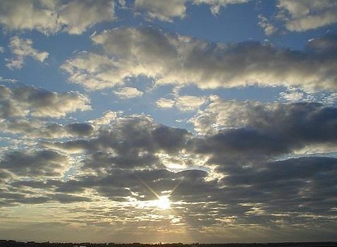 Morning Glow by Cheryl Waugh Whitney