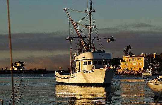 Morning Harbor Light by Liz Vernand
