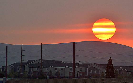 Morning Has Broken by AJ Schibig
