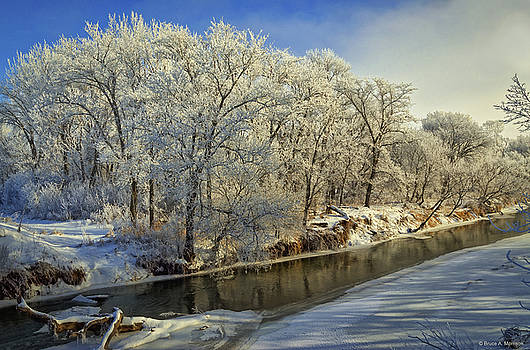 Morning Icing Along the Creek by Bruce Morrison
