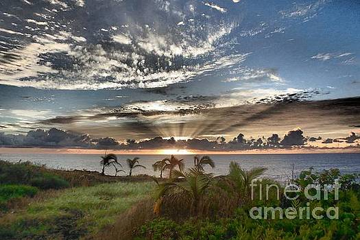 Melanie Pruitt - Morning in Paradise
