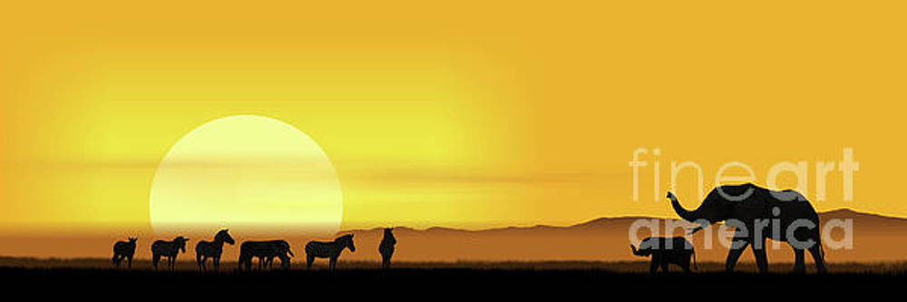 Morning in the African savannah by Monika Juengling