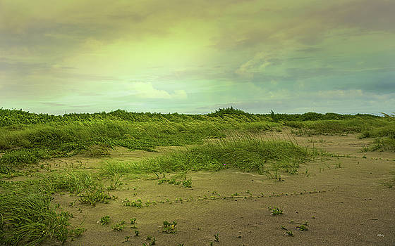 Morning in the Barrier Islands by John M Bailey