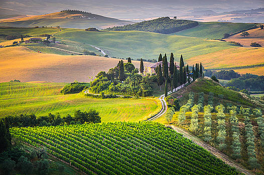 Morning in Tuscany by Stefano Termanini