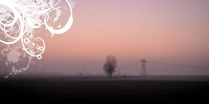 Morning Light by Alberto Catellani