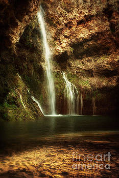 Morning Light at Dripping Springs II by Tamyra Ayles