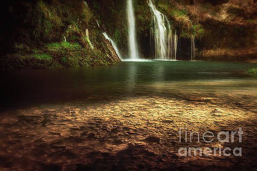 Morning Light at Dripping Springs by Tamyra Ayles