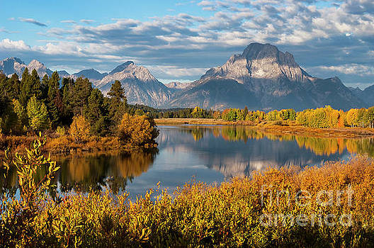 Bob Phillips - Morning Light at Oxbow Bend Two