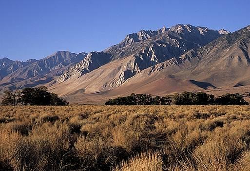 Don Kreuter - Morning Light Eastern Sierra