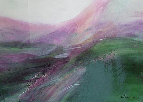 Morning Light by Eva Macie