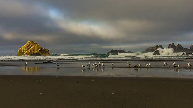 Morning light on the Beach by Ulrich Burkhalter