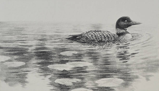 Morning Loon by Jim Young