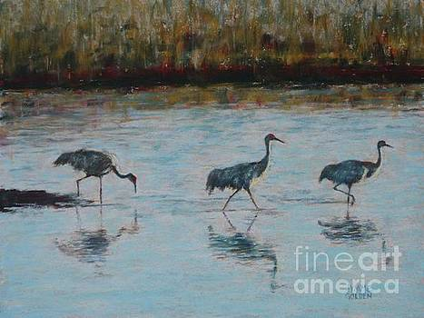 Morning March of the Sandhill Cranes by Jymme Golden