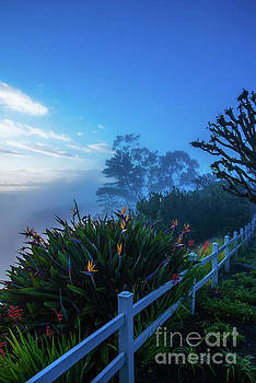 Morning Marine Layer by Gregory Schaffer