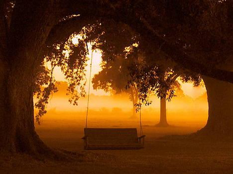 Morning Mist 7 by Ramona Barnhill