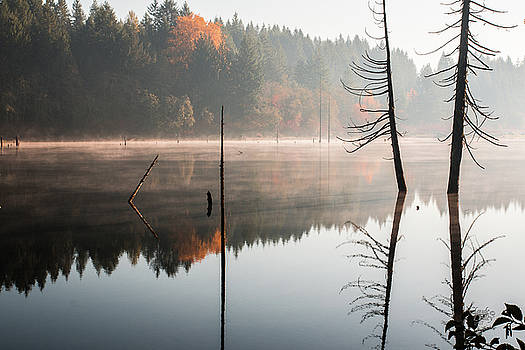 Morning Mist On A Quiet Lake by Claude Dalley