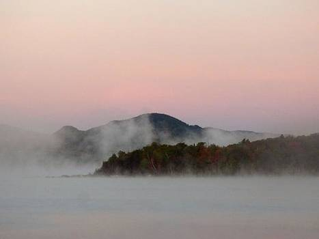 Morning mist  by Scott Welton