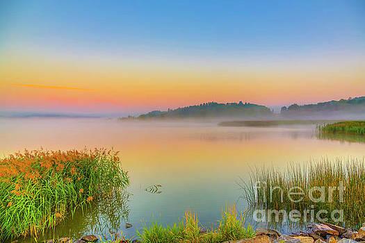 Morning mist by Veikko Suikkanen