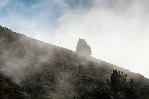 Morning mist by Wim Slootweg