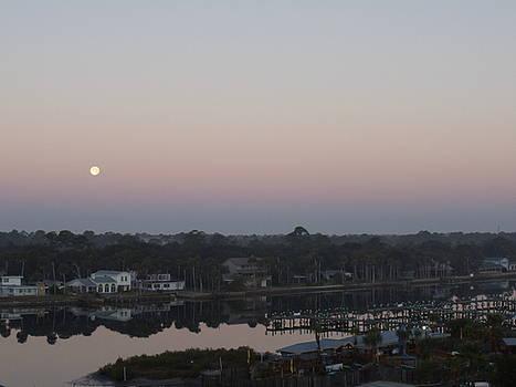 Morning Moon by Cheryl Waugh Whitney