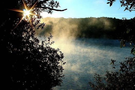 Morning On Price Lake by Charles Shedd
