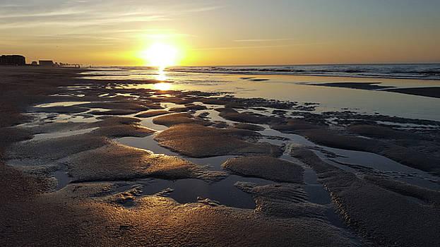 Morning On The Beach by Cedric Hampton