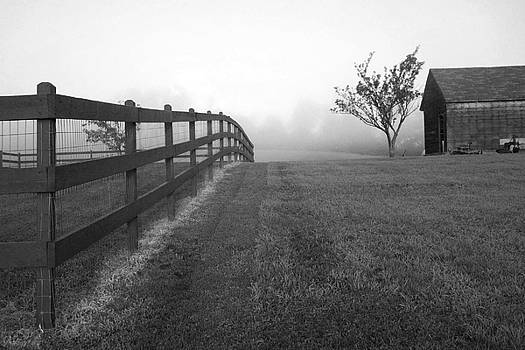 Morning On The Farm        BW by Linda Drown