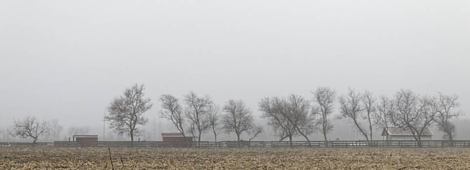 Morning on the farm by Steve Gravano