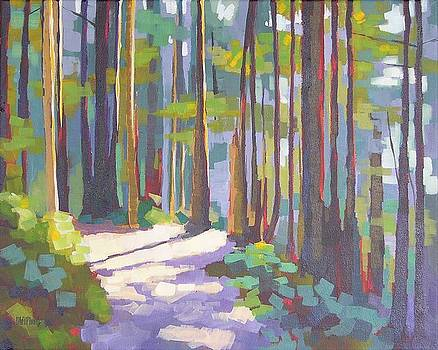 Morning on the Trail by Mary McInnis