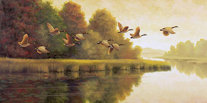 Morning Pass by Guy Crittenden