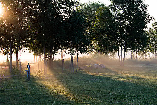 Morning Rays by Marc Champagne