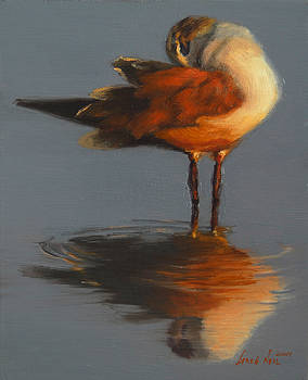 Morning Reflection by Greg Neal