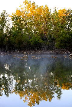 Morning Reflections by Jennifer  Lane