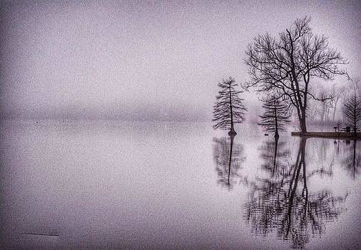 Morning Reflections by Sumoflam Photography