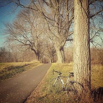 Morning Ride by David Oakill