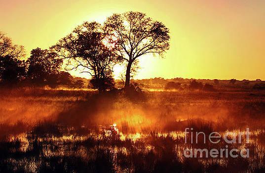 Morning rises, Namibia by Wibke W