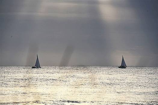 Morning Sail by Kim Bemis