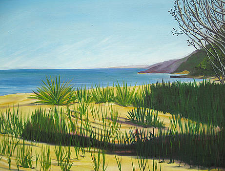 Morning Shadows Dune Series five by D T LaVercombe