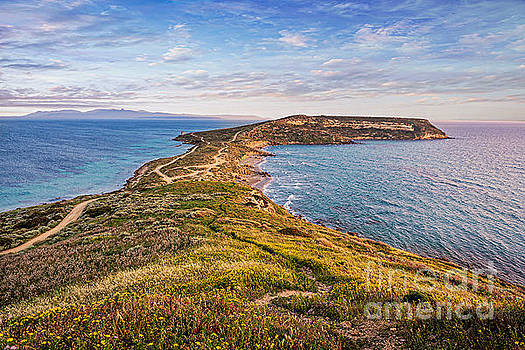 Ricardos Creations - Morning Splendor Island Seascape C3